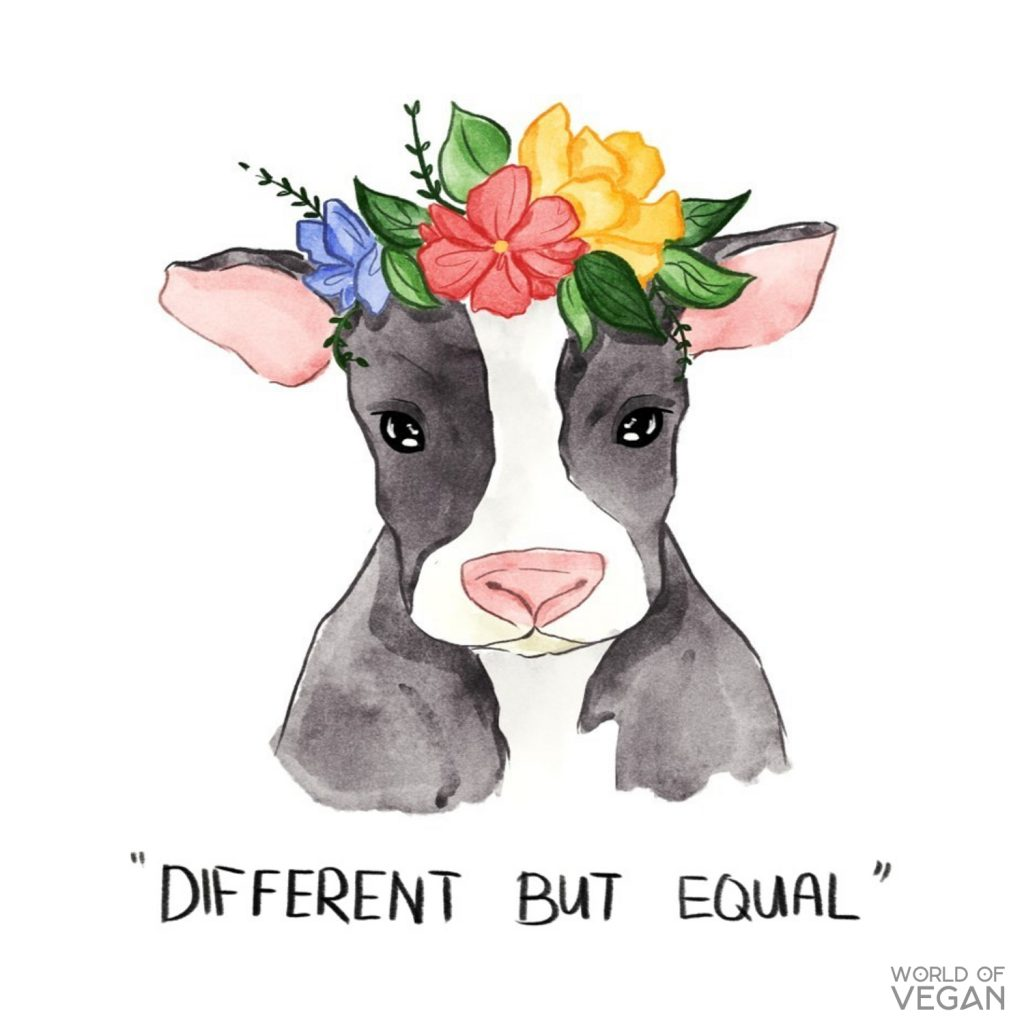 Cow Flower Crown | Vegan Illustration Cow | Vegan Art | WorldofVegan.com #vegan #art #illustration #animals #cows