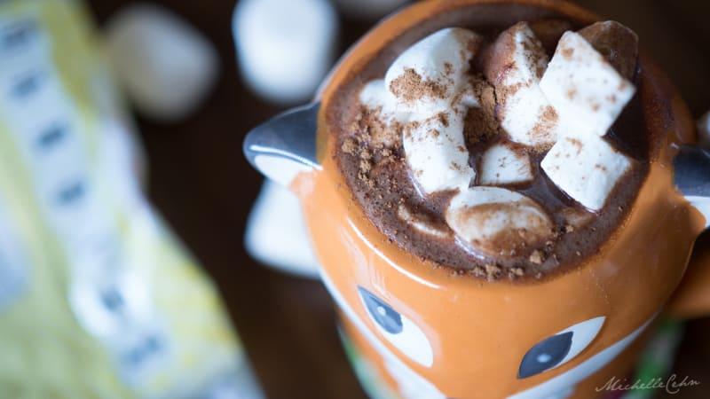 vegan mexican hot chocolate-2