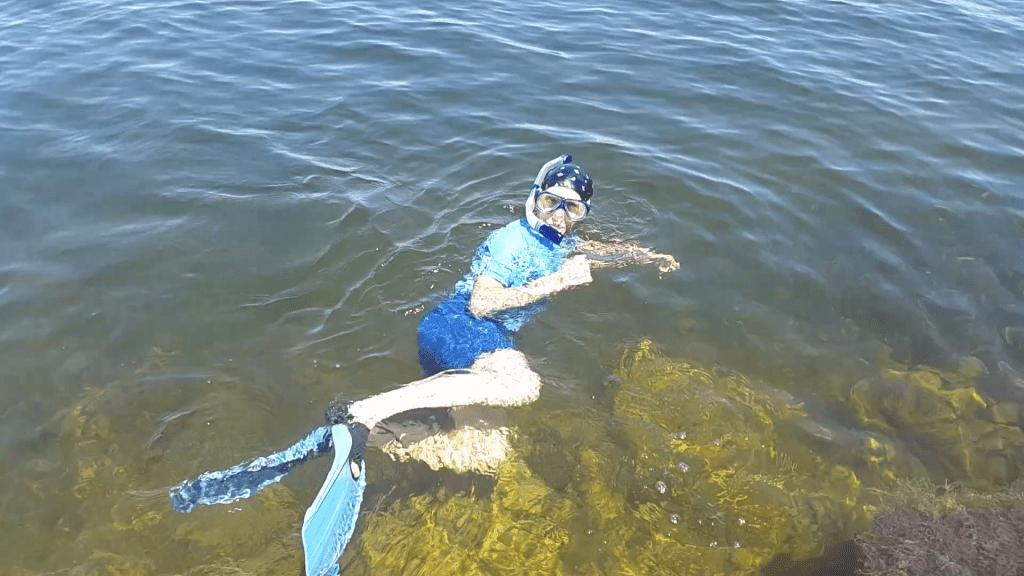 jonathan balcombe snorkel fish