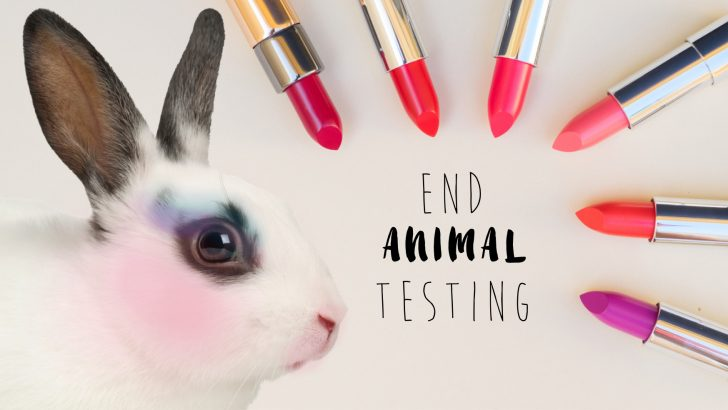 The Humane Cosmetics Act and How You Can Help End Animal Testing!