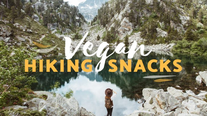 Best Vegan Snacks to Take Hiking