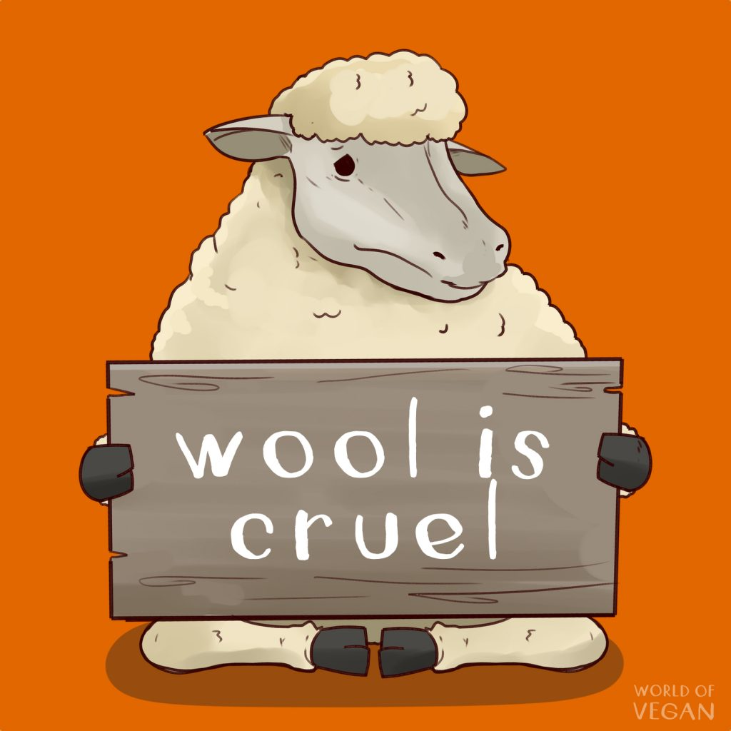8 Reasons to Boycott Wool | WorldofVegan.com | #wool #sheep #animals #vegan #vegetarian