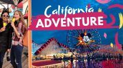 Vegan Guide to Disney's California Adventure