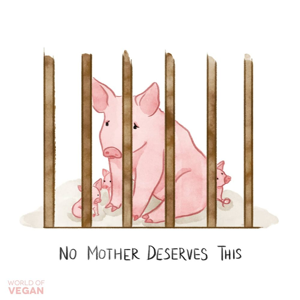 Gestation Crate Illustration | No Mother Deserves This | Vegan Art | WorldofVegan.com | #vegan #art #pig #illustration #animals #worldofvegan