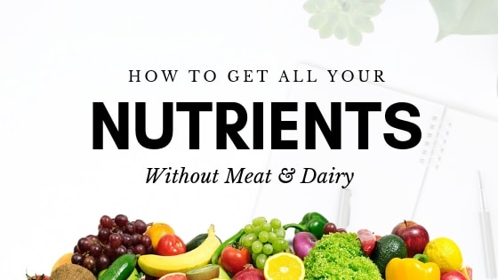 How to Get All Your Nutrients As A Vegan