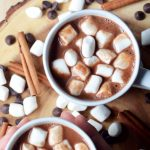 Cinnamon Vegan Hot Chocolate | Warm Beverage Recipe | World of Vegan | #hot #chocolate #cocoa #cinnamon #winter #fall #christmas #vegan #worldofvegan