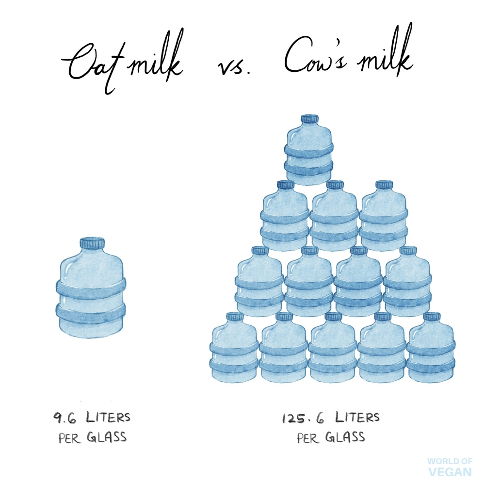 Oat Milk vs Cows Milk Sustainability Water Usage Illustration