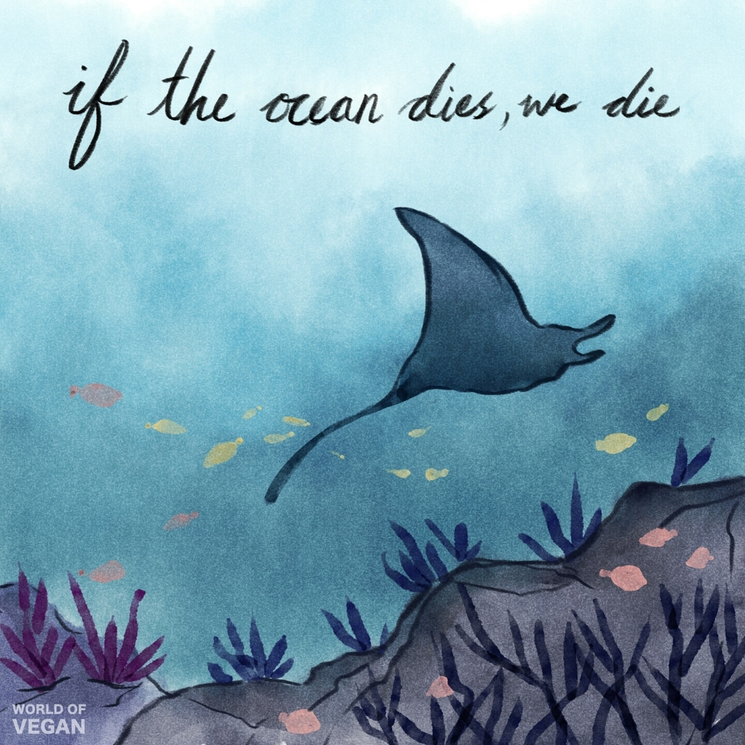 """If The Ocean Dies, We Die"" 