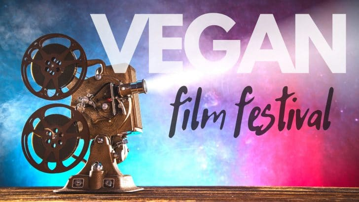 The International Vegan Film Festival