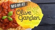 How to Order Vegan at Olive Garden